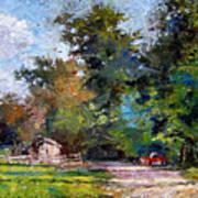 Country Lane Art Print
