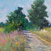 Country Path With Sunflowers Art Print
