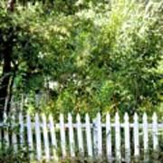 Country Picket Fence Art Print