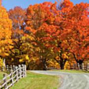Country Road Autumn Art Print