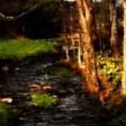 Country Stream Art Print