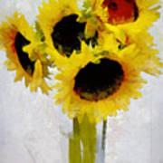 Country Sun I Art Print