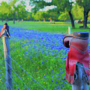 Country Western Blue Bonnets Art Print