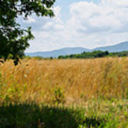 Countryside Of Italy 2 Art Print