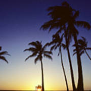 Couple And Sunset Palms Art Print