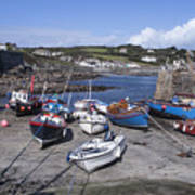 Coverack Harbour Cornwall Art Print