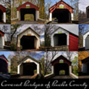 Covered Bridges Of Bucks County Art Print