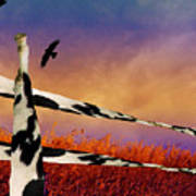 Cow Fence Art Print