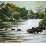 Cow Habitant Art Print