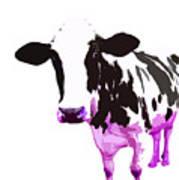Cow In A White World Art Print