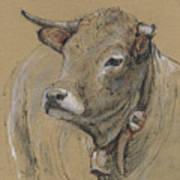 Cow Portrait Painting Art Print
