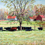 Cows Grazing In One Field  Art Print