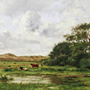 Cows In A Meadow Art Print