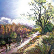 Coyotes In Placerita Canyon Art Print
