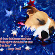 Cradled By A Blanket Of Stars And Stripes - Quote Art Print