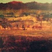 Cranberry Fields In November Art Print
