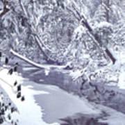Cranberry River Winter Heavy Snow Art Print