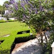 Crane Cottage Garden In Spring Art Print