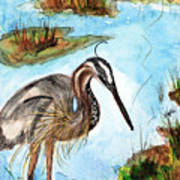Crane In Florida Swamp Art Print