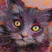 Crazy Cat Black Kitty Art Print