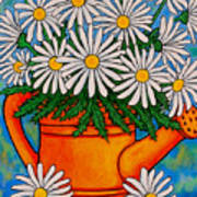 Crazy For Daisies Art Print