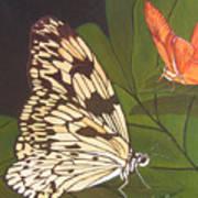 Cream And Orange Butterflies Art Print