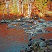 Creek 5  Art Print