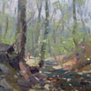 Creek At Lockport Natural Trail Art Print
