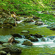 Creek In Great Smoky Mountains National Art Print