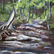 Creek In The Park Art Print