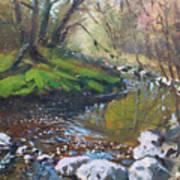 Creek In The Woods Print by Ylli Haruni