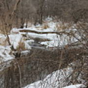 Creek Winding Through The Snow Art Print
