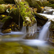 Creek With Icicles Art Print