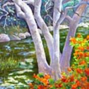 Creekside Art Print