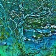 Creekside Art Print