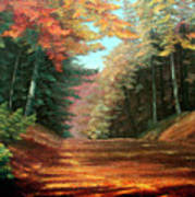 Cressman's Woods Art Print by Hanne Lore Koehler