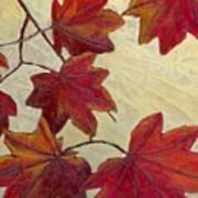 Crimson Branch Art Print
