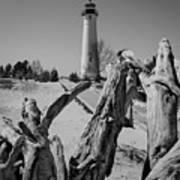Crisp Point Lighthouse With Driftwood Art Print