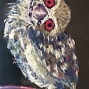 Crooked Owl Art Print