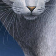 Cropped Cat 5 Art Print by Carol Wilson