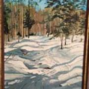 Cross Country Ski Trail Art Print