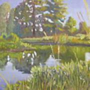 Cross Creek Art Print