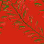 Crossing Branches 16 Art Print