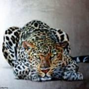 Crouching Leopard Art Print