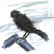 Crow In The Wind Art Print
