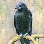 Crow Vigilant Art Print