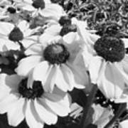 Crowded Flowers Art Print