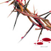 Crown Of Thorns Print by Dennis Schmelzer