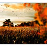 Crows And Corn Art Print