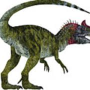 Cryolophosaurus Dinosaur Tail Art Print